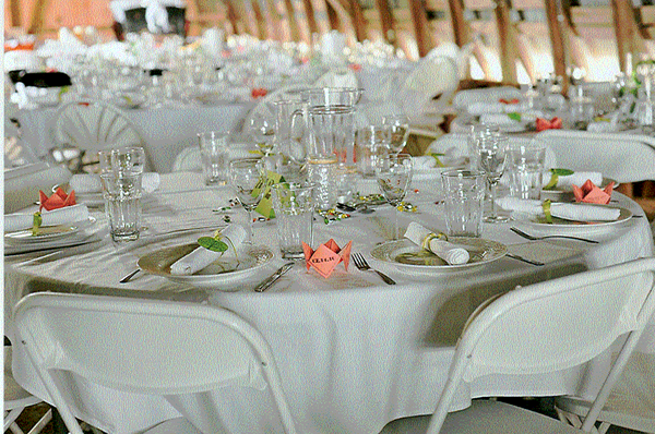 Dishes and Silverware Rentals